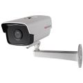 IP Видеокамера HiWatch DS-I110